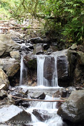Small waterfall in New Guinea