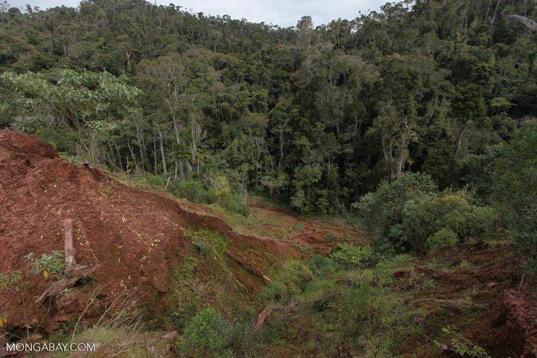 Damage from a graphite mine near Mantandia [madagascar_1085]