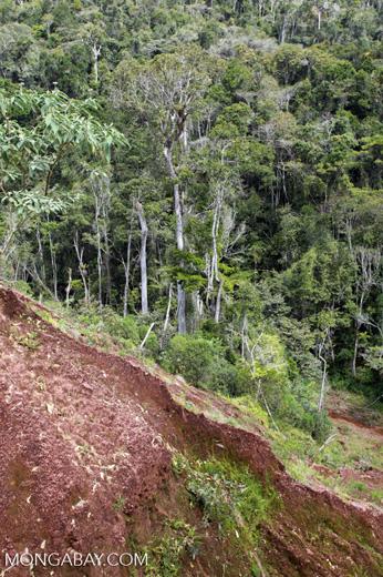 Damage from a graphite mine near Mantandia [madagascar_1087]