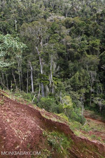 Damage from a graphite mine near Mantandia [madagascar_1088]