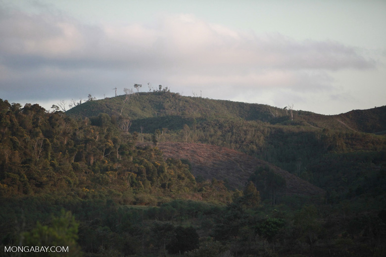 Deforestation in Madagascar [madagascar_1616]