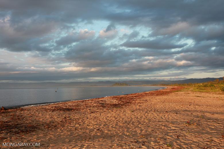 Bay of Antongil beach at dawn [madagascar_1834]