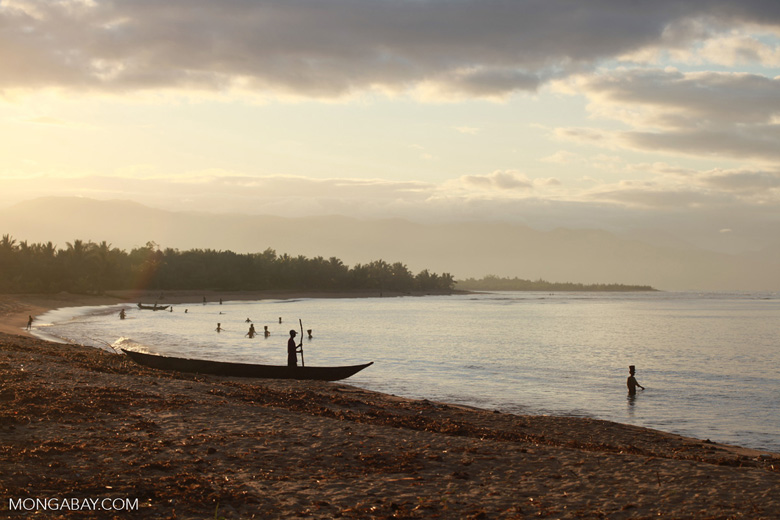 Morning activities on a beach near Maroantsetra with Nosy Mangabe in the background [madagascar_1848]
