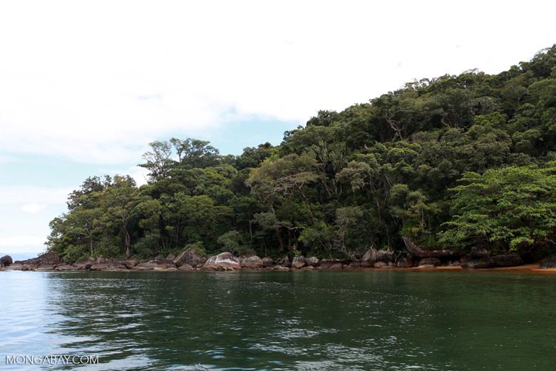 Nosy Mangabe coastline [madagascar_1878]