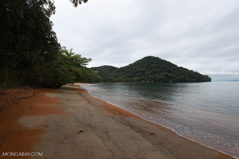 Nosy Mangabe beach [madagascar_1882]