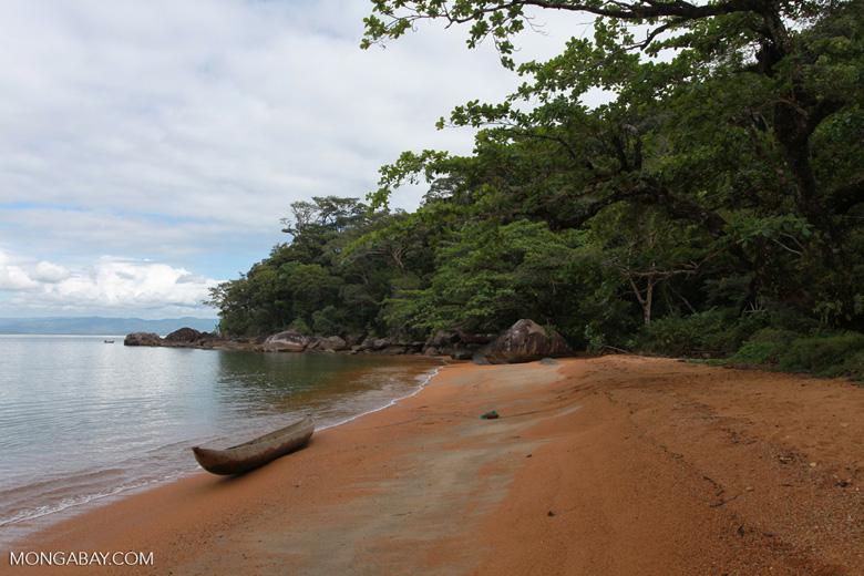 Nosy Mangabe coastline [madagascar_1885]