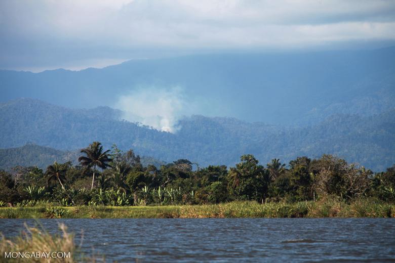 Forest fire near Masoala