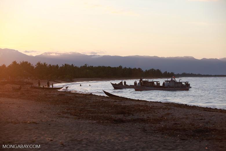 Beach activities near Maroantsetra [madagascar_2248]