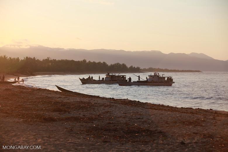 Rosewood trafficking boats [madagascar_2262]