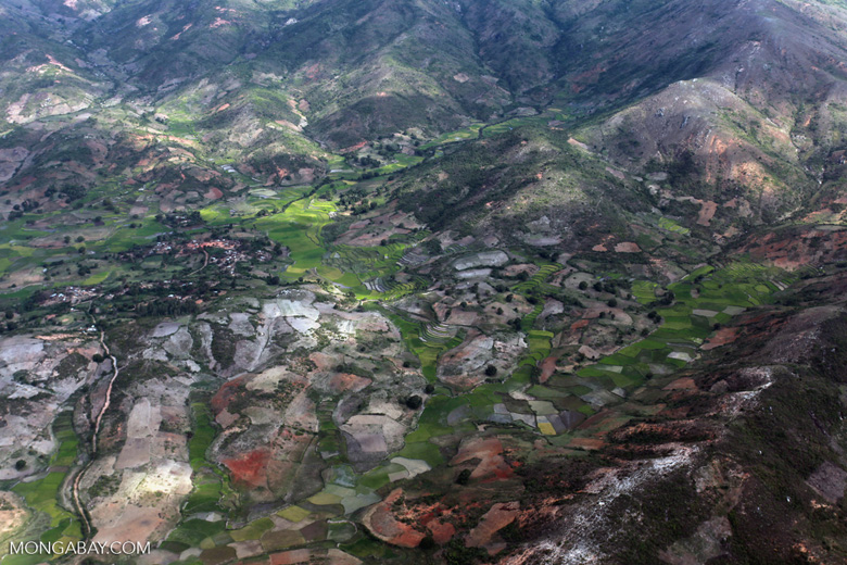 Aerial view of rice fields outside of Fort Dauphin [madagascar_3060]
