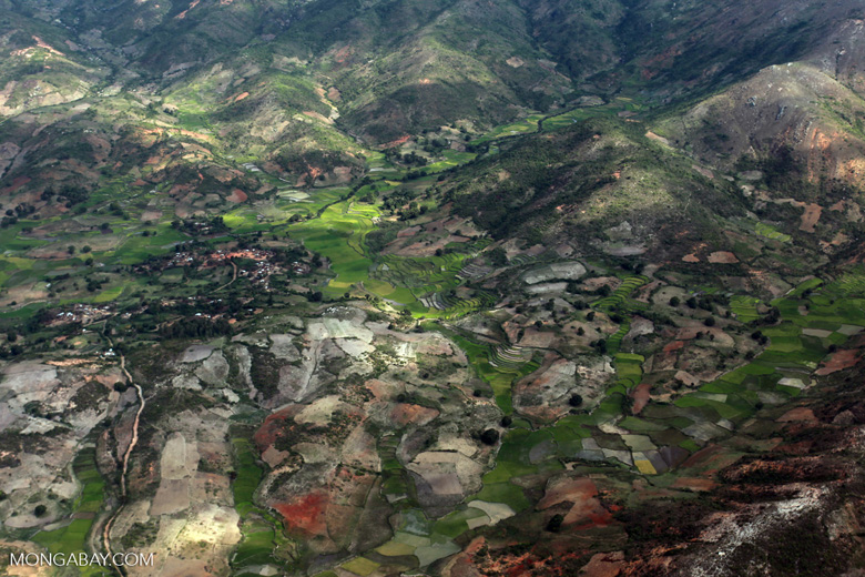 Aerial view of rice paddies outside of Fort Dauphin