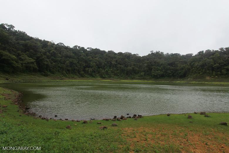 Crater lake, Lac de la Coupe Verte [madagascar_3809]
