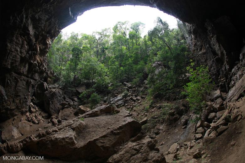 Ankarana cave [madagascar_3961]