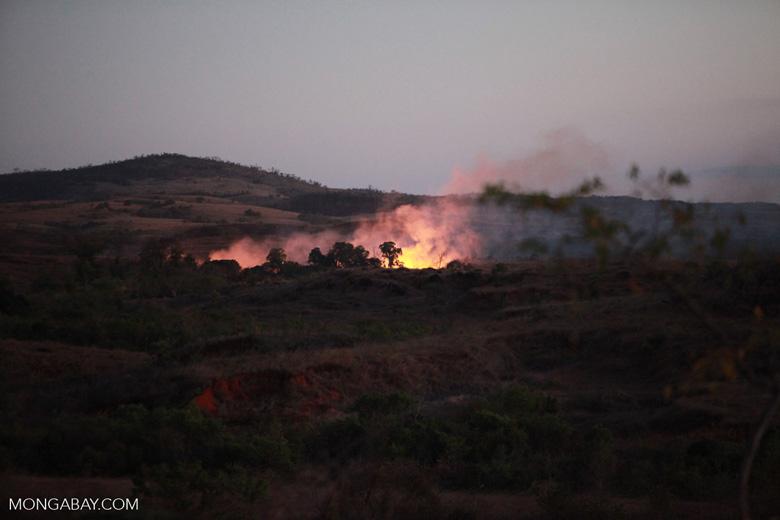 Brush-fire in Madagascar