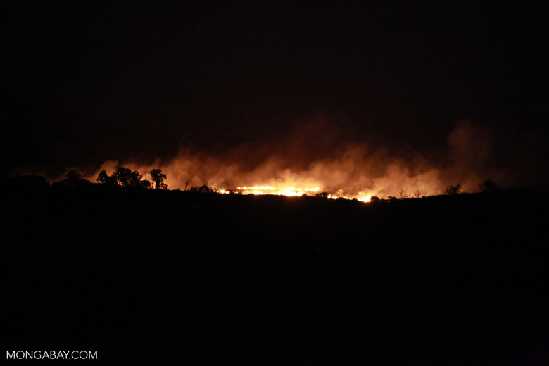 Land-clearing fire in Madagascar [madagascar_4493]