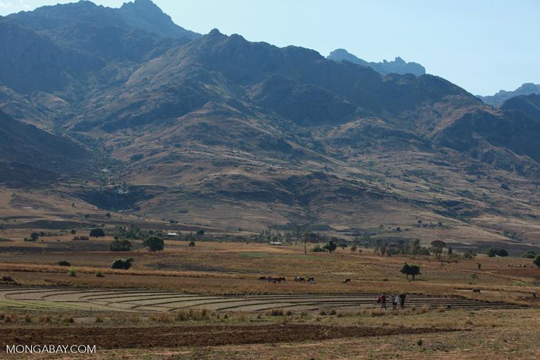 Crossing the Tsaranoro Valley [madagascar_5963]