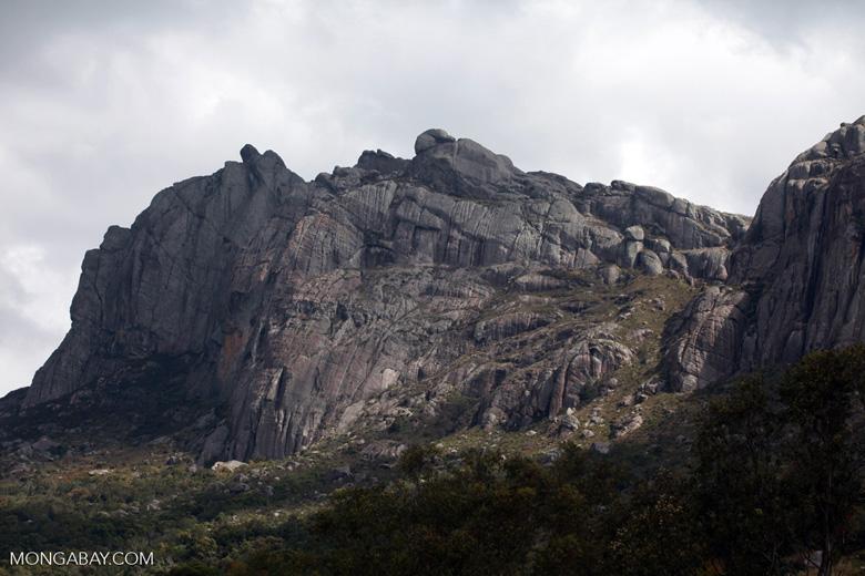 Antanifotsy Valley [madagascar_6108]