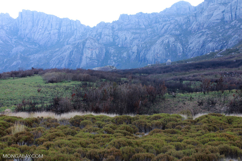 Andringitra landscape [madagascar_6353]