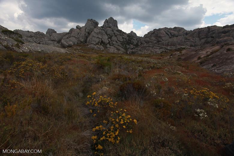 Andringitra landscape [madagascar_6581]