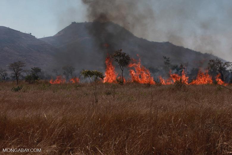 Fire in Madagascar [madagascar_6978]