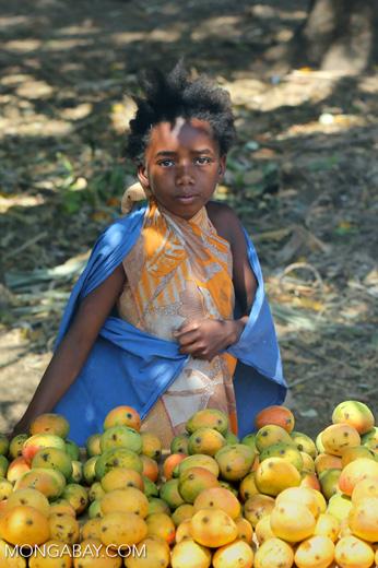 Girl selling mangos alongside a road [madagascar_ankarafantsika_0384]