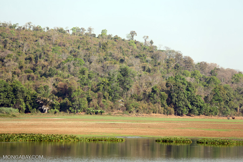 Flood zone near Lake Ravelobe