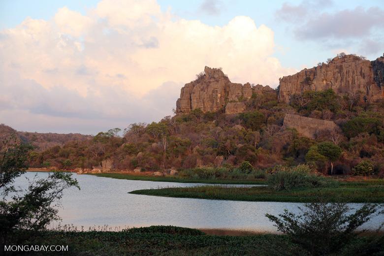 Tsingy of Ankarana as seen from the western side