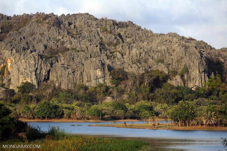 Tsingy of Ankarana as seen from the western side [madagascar_ankarana_0007]