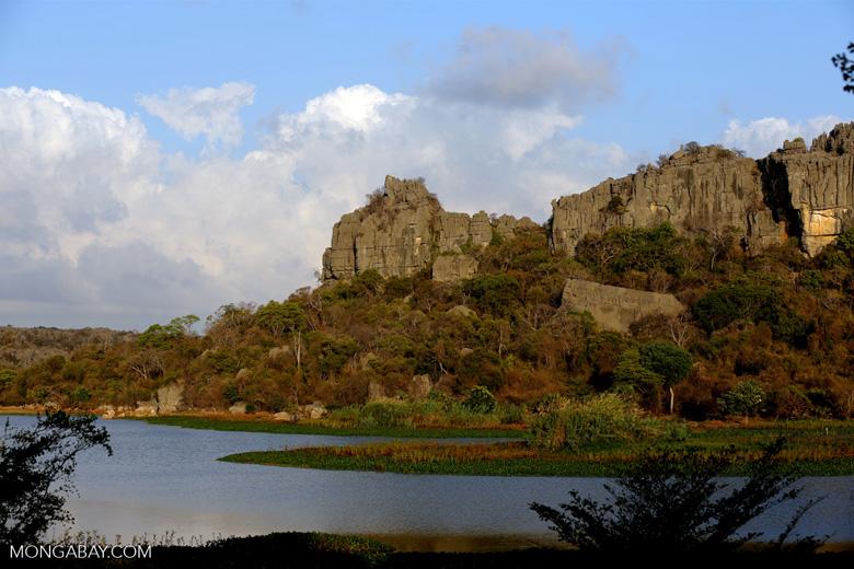 Tsingy of Ankarana as seen from the western side [madagascar_ankarana_0012]