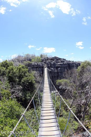 Tsingy bridge [madagascar_ankarana_0338]