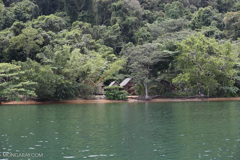 Huts on Nosy Mangabe [madagascar_maroantsetra_0030]