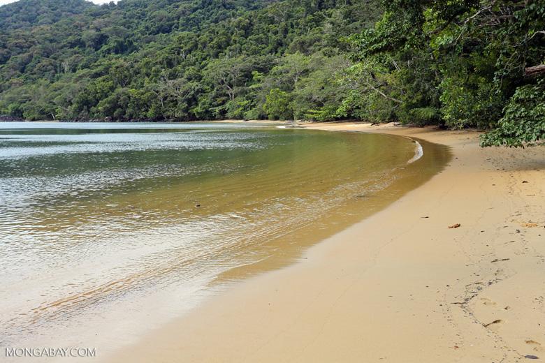 Nosy Mangabe beach [madagascar_maroantsetra_0211]