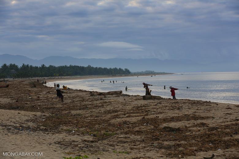 Villagers fishing on a beach in Maroantsetra [madagascar_maroantsetra_0257]