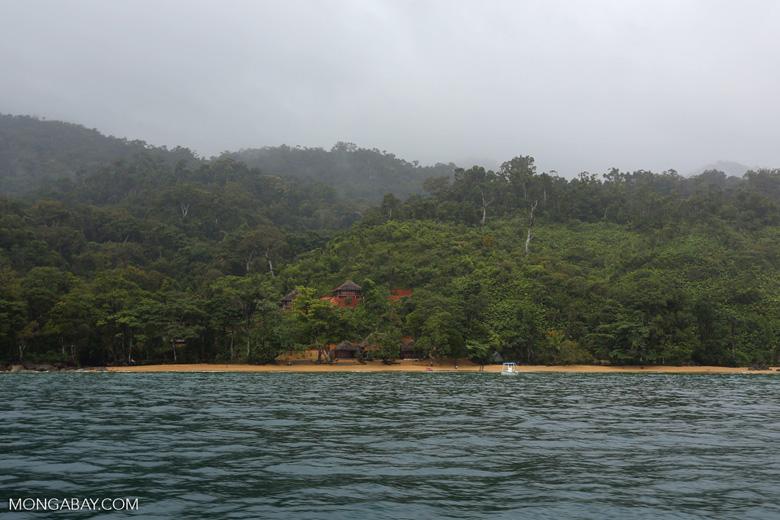 Petite Masoala site on Masoala Peninsula [madagascar_masoala_0034]