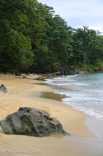 Beach on the Masoala Peninsula [madagascar_masoala_0038]
