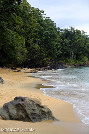 Beach on the Masoala Peninsula [madagascar_masoala_0040]
