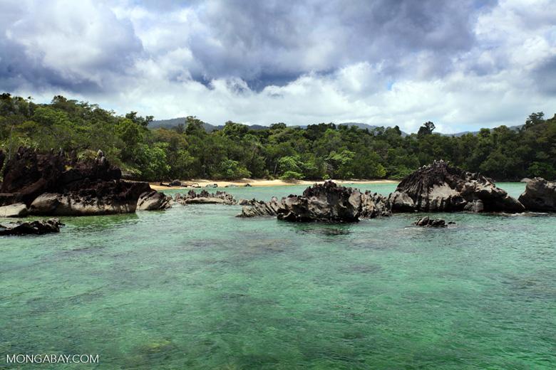 Tampolo Marine Park [madagascar_masoala_1075]
