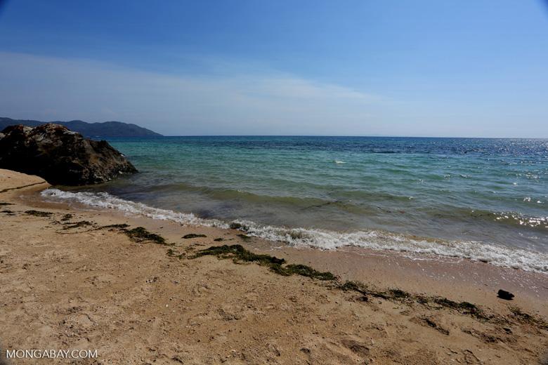 Nosy Komba beach [madagascar_nosy_komba_0013]
