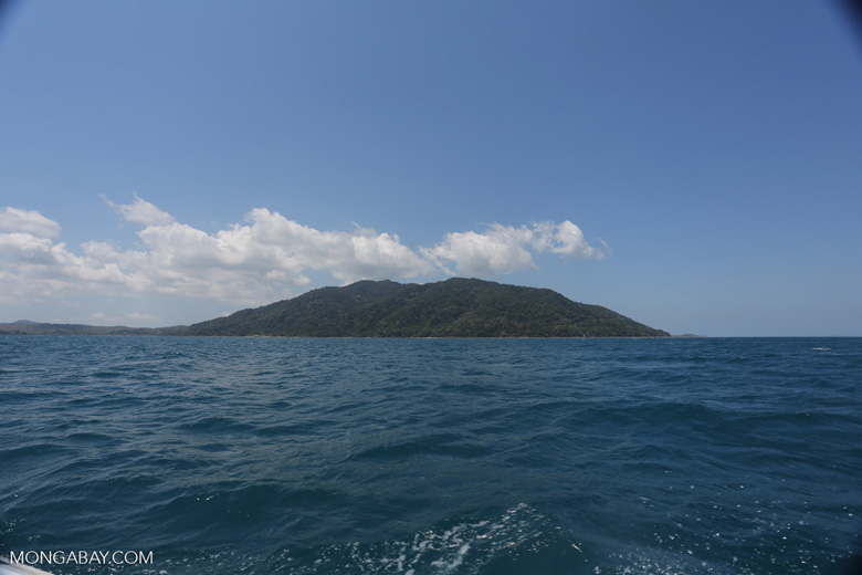 Lokobe Reserve as seen from the ocean [madagascar_nosy_komba_0057]