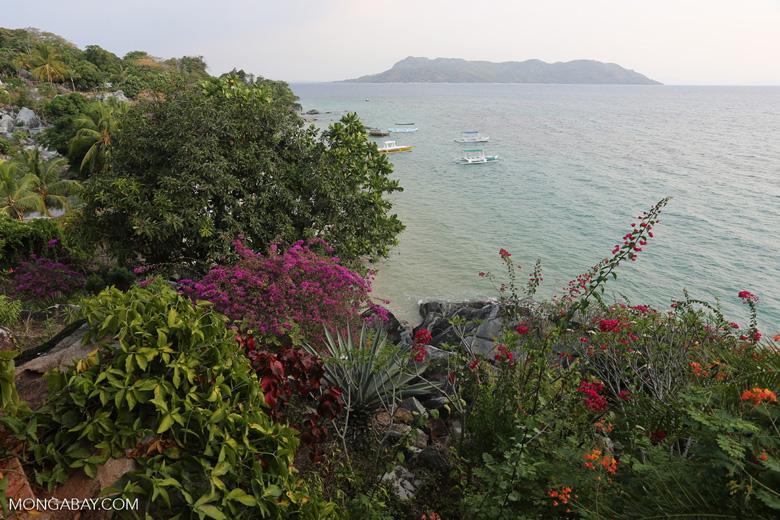 Beach and coast on Nosy Komba as seen from the Jardin Vanille Hotel [madagascar_nosy_komba_0241]