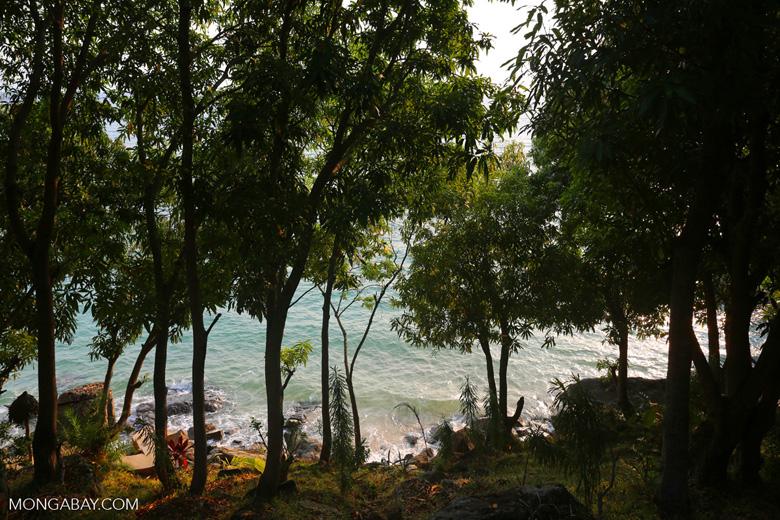 Beach and coast on Nosy Komba as seen from the Jardin Vanille Hotel [madagascar_nosy_komba_0245]