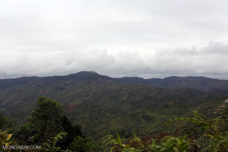 Slash and burn deforestation outside Tamatave [madagascar_tamatave_0134]