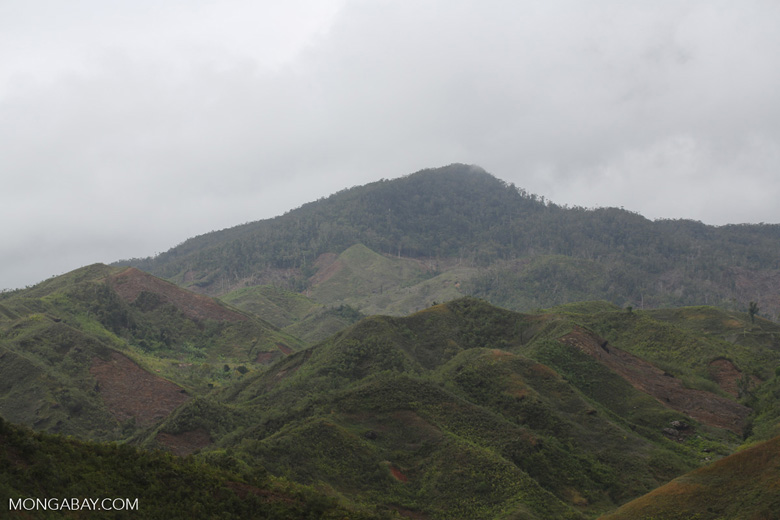 Slash and burn clear-cutting of Madagascar's rainforest [madagascar_tamatave_0142]