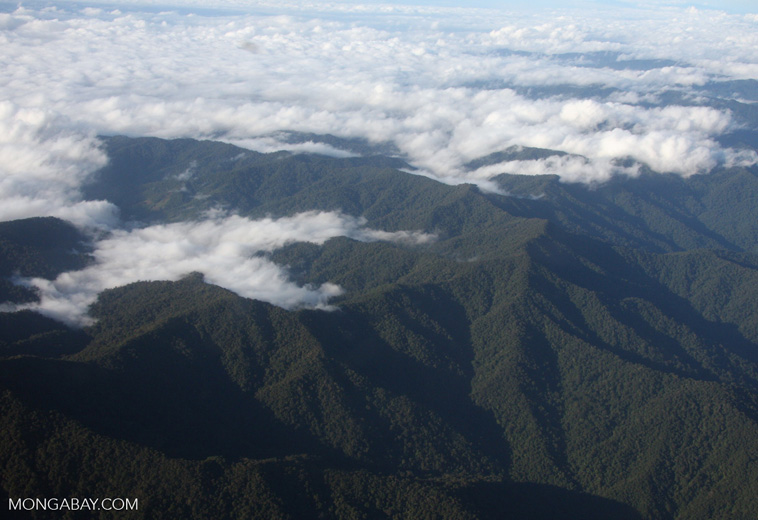 Forested mountains of Borneo