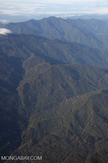 Rugged forest mountains of Borneo -- borneo_2753