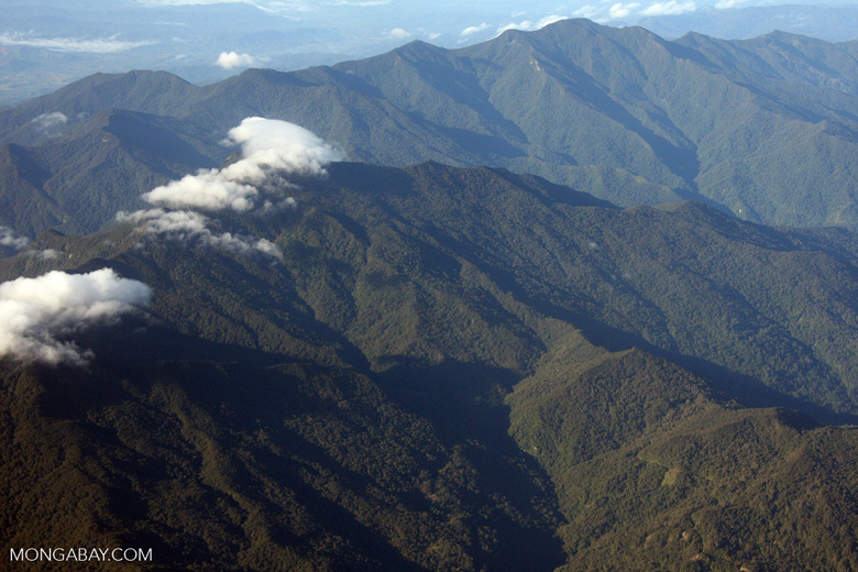 Rugged forest mountains of Borneo