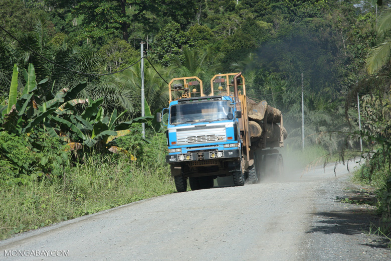 Logging truck carrying timber out of the Malaysian rainforest -- borneo_2887