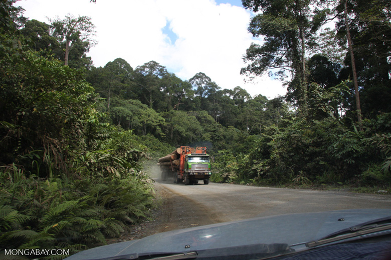 Logging truck carrying timber out of the Malaysian rainforest -- borneo_2907