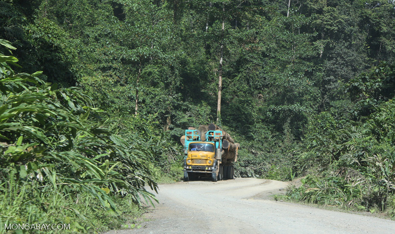 Logging truck carrying timber out of the Malaysian rainforest -- borneo_2913