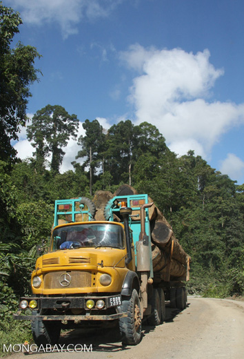 Logging truck carrying timber out of the Malaysian rainforest -- borneo_2917